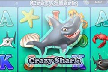 Crazy Shark Slot